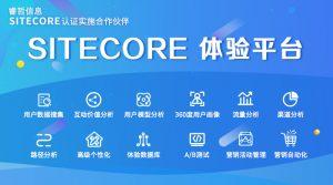 睿哲信息:应对内容风暴,需要Sitecore内容体验平台